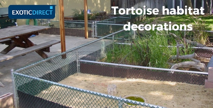 tortoise enclosures with different substrates